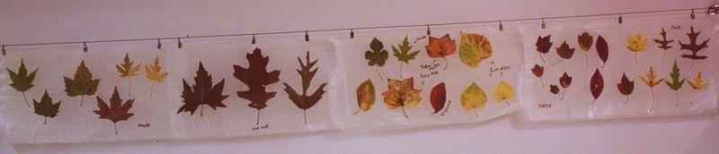 Autumn 2011 110