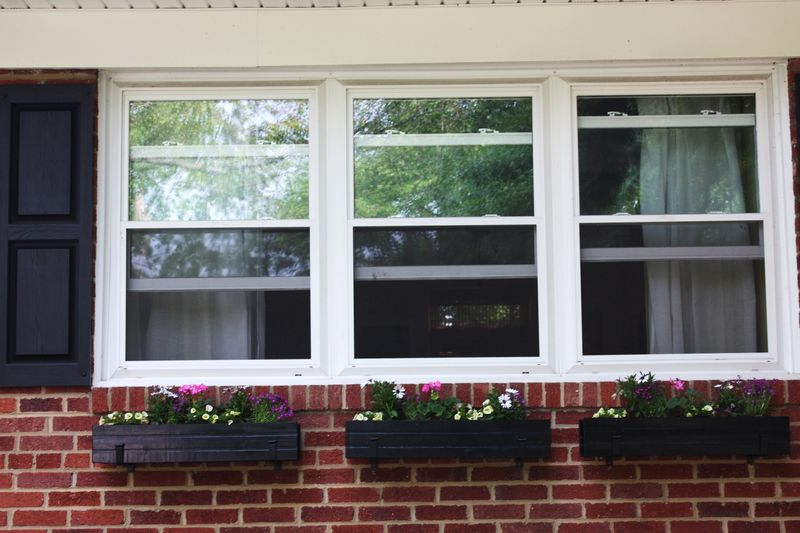 Water painting and window  boxes 007