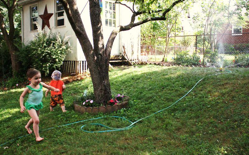 Sprinkler and herbs 008