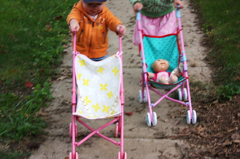 Stroller pictures 049