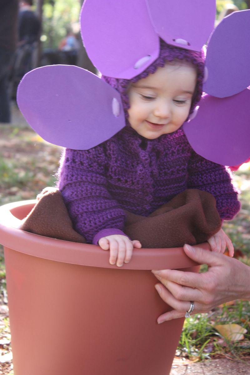 Violet Flower- Halloween 08 008