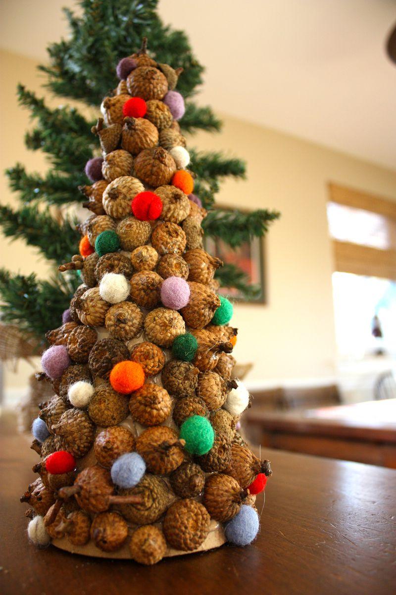 acorn cap tree