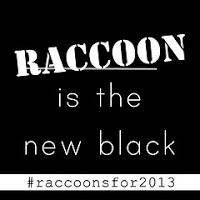 Raccoonblack