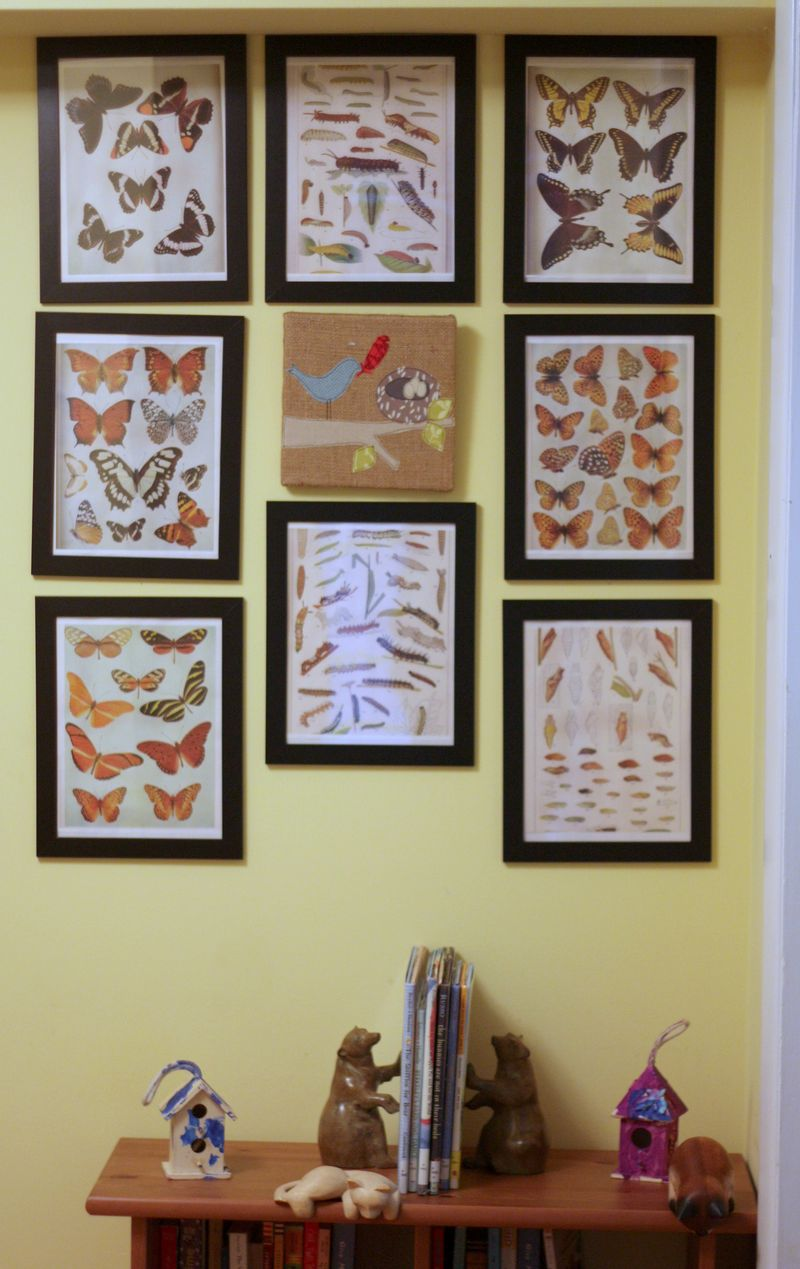 Feather your nest wall
