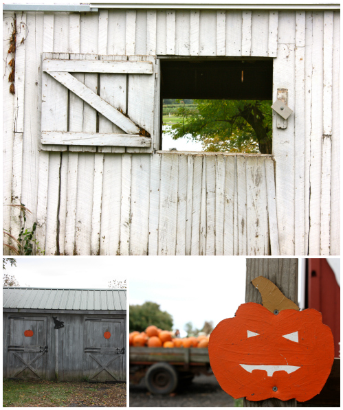 Barns and pumpkins