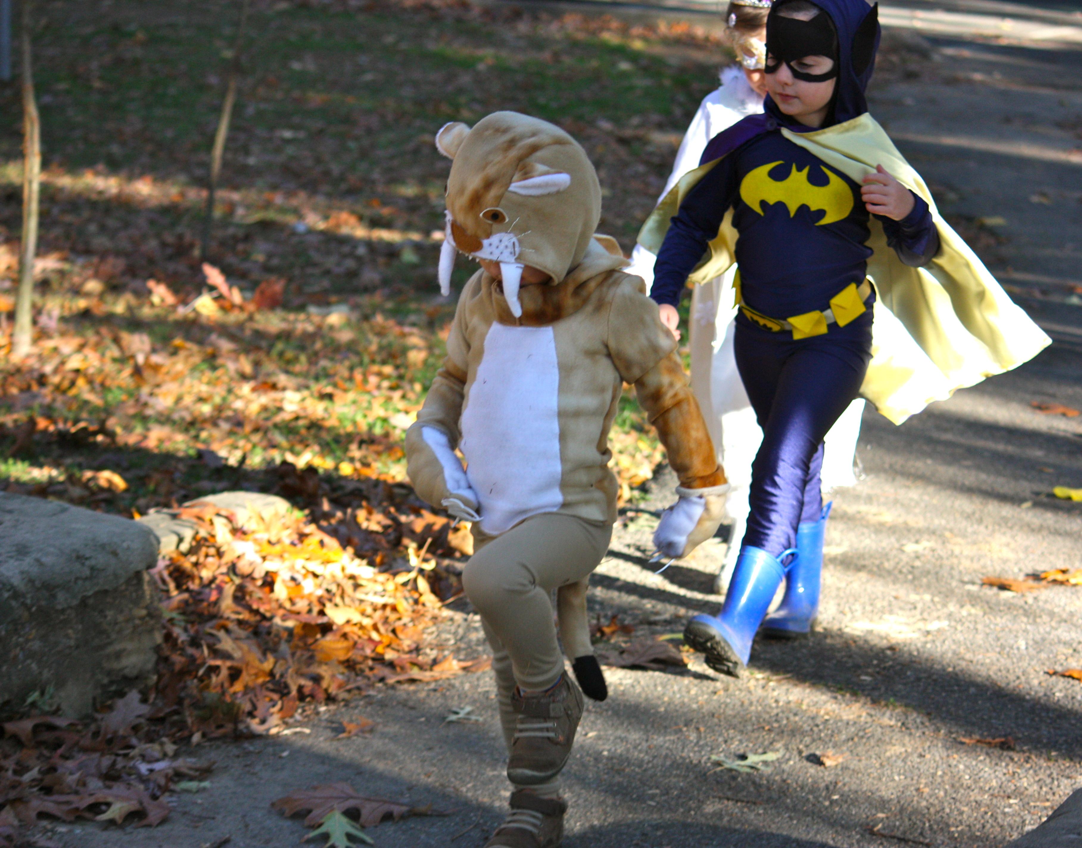 IMG_3715 & Happy Halloween!... - Buzzmills