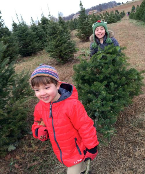 Kiddos tree