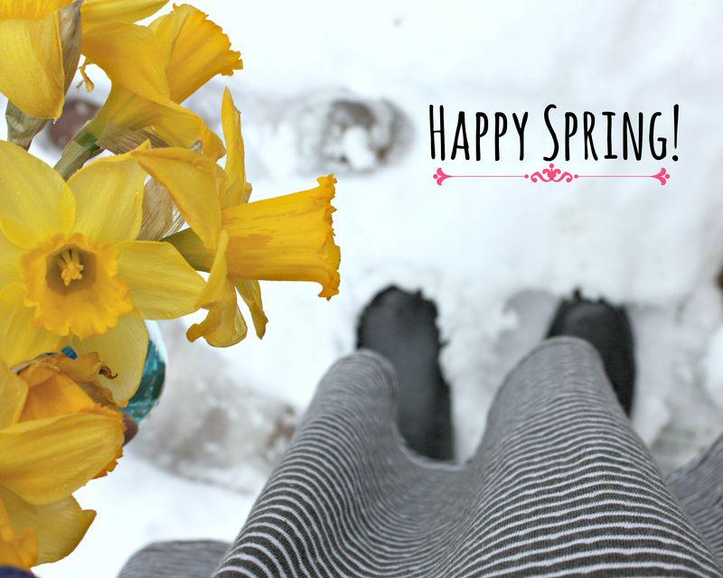 Daffodils happy spring