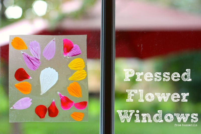 Pressed flower windows