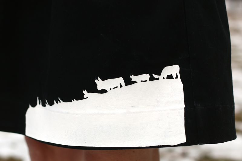 Skirt closeup